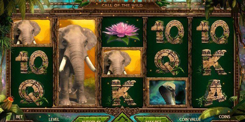 Jungle Spirit: Call of the Wild™