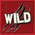SYM1 Wild_cartman