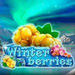 winterberries-slot