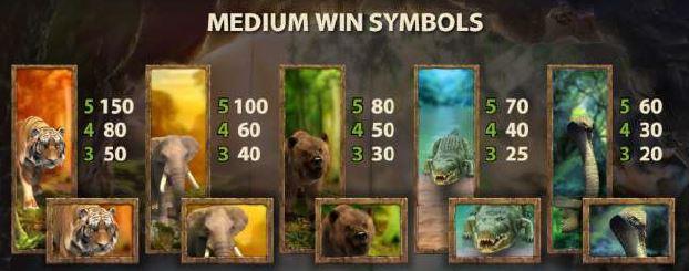 Jungle Spirit - Symbolvärden