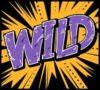Wild Wild West Expanding Wild