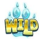 WolfCub Wild