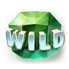 wildsymbol