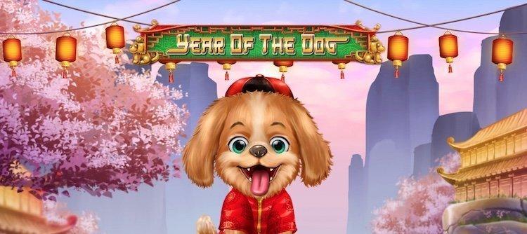 Year of the dog från D-Tech