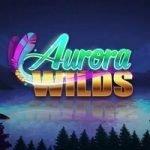 Aurora Wilds – första slotten från ny studio
