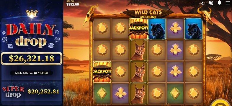 wild cats multiline jackpot