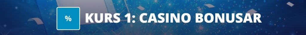 casinoskolan 1