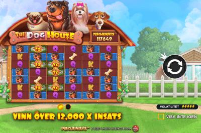 the dog house casinospel